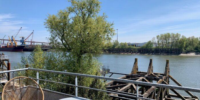 951936 BUREAUX LOCATION LOUER SAINT HERBLAIN 44 BUREAU IMMOBILIER ENTREPRISE ARTHUR LOYD PHOTO 7